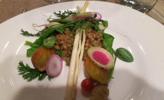 stein erikson freekeh and fall vegetables