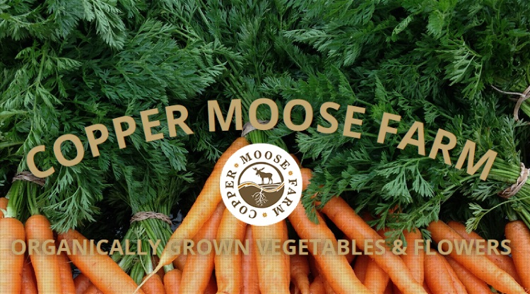 copper moose farms logo with carrots
