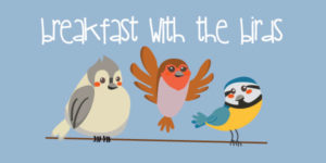 Breakfast with the birds