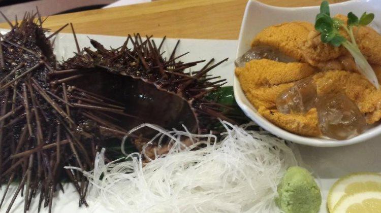 Kobe Japanese Restaurant - live uni special! Credit, Kobe