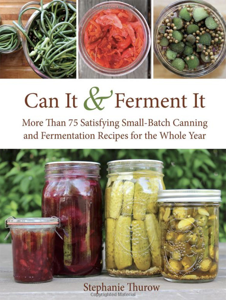 Can It And Ferment It, credit Amazon