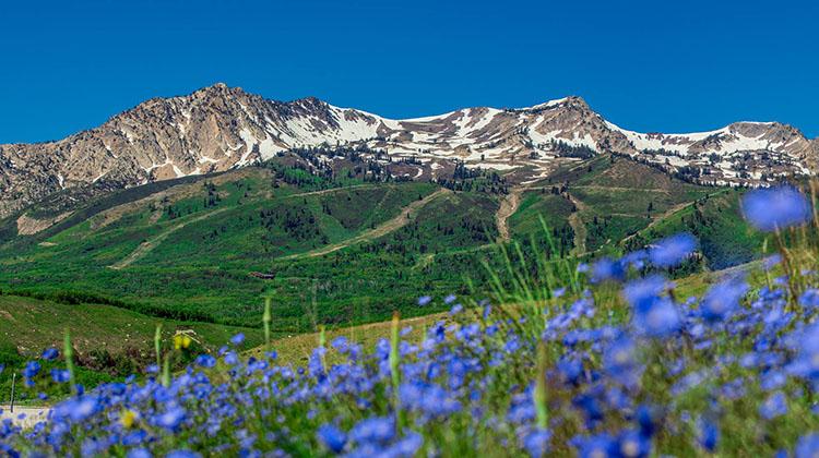 Snowbasin mountains (Snowbasin)