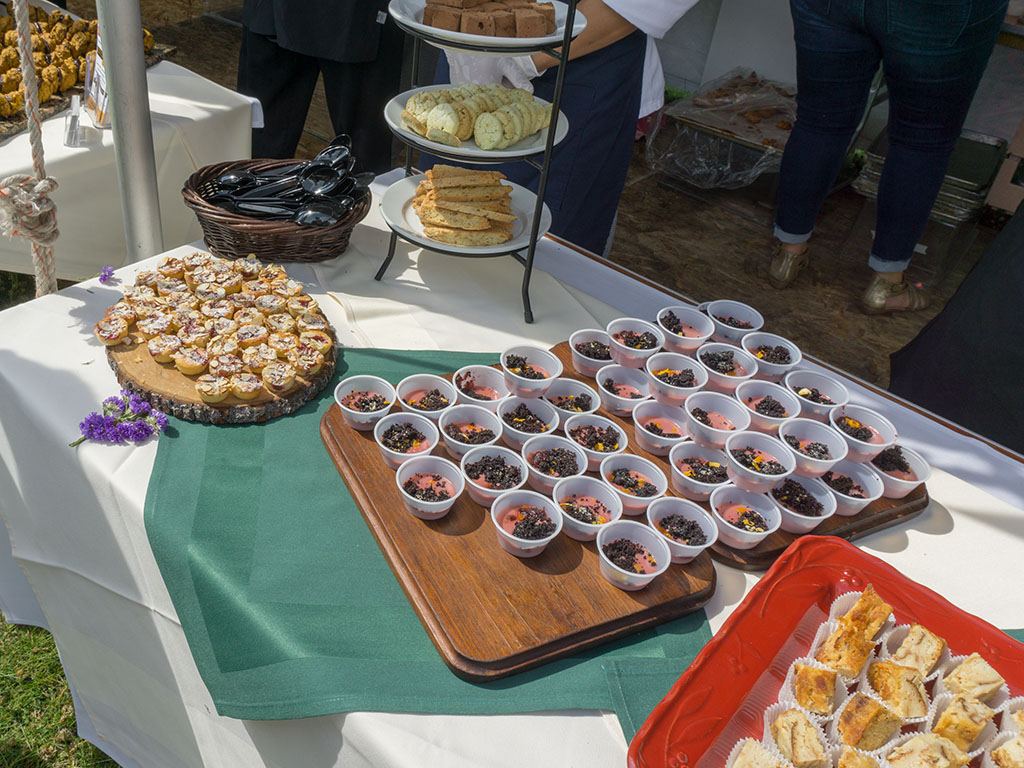 Taste Of The Wasatch 2017 - other desserts